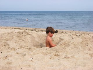 North Truro house photo - Charlie doing his thing on our private bay beach