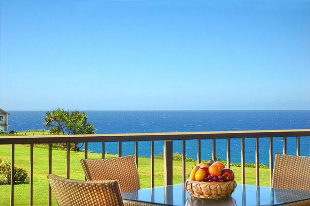 Oceanfront, Great Lanai Views, Whales in Winter & Dolphins Year-Round, King Bed