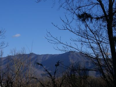 Lovely mountain view - photo taken from main level deck Feb 2013