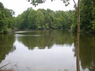 Fennville house photo - Stocked pond with panfish and bass for your fishing needs