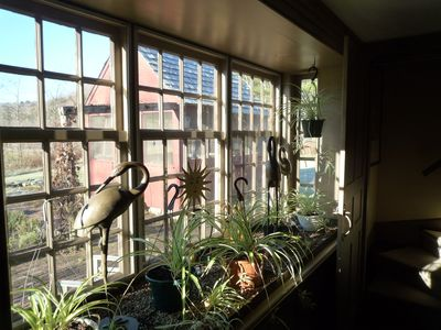 A light filled window overlooking patio and gardens