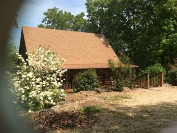 Holiday Island cabin rental - Snowball tree in bloom