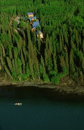 Kenai cabin rental - Your cabin located on the world famous Kenai River.