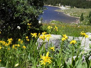 Great amount of hiking to do in Chaffee County - Salida condo vacation rental photo