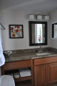Master Bath - Remodeled in 2013