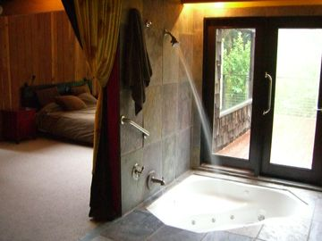 Sunken jacuzzi and shower with opening french doors off the master. Fireplace!
