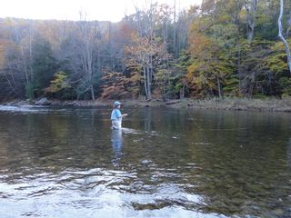 Cowen cabin photo - Wading for Trout in the Williams River; The Swimming Hole in Front of Cabin.