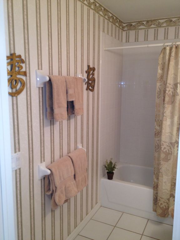 Guest Bath/Shower