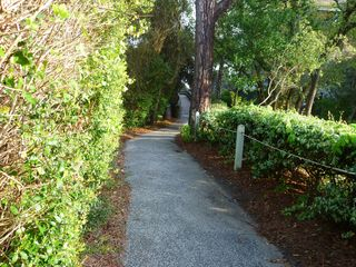 Kiawah Island villa photo - Path to the Beach
