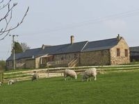 THE STABLE, pet friendly, with hot tub in Milton, Ref 3739