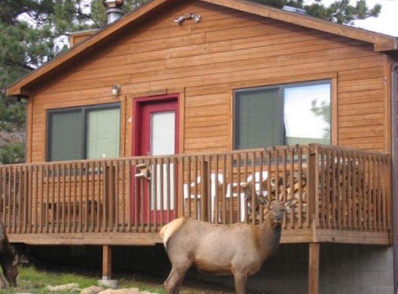 River Cabin Close To Downtown Ymca And R Vrbo