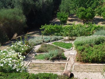 Garden and orchard view