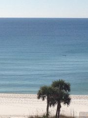 Okaloosa Island condo photo - Look close - the 2 dolphins are swimming by... Taken from the balcony!