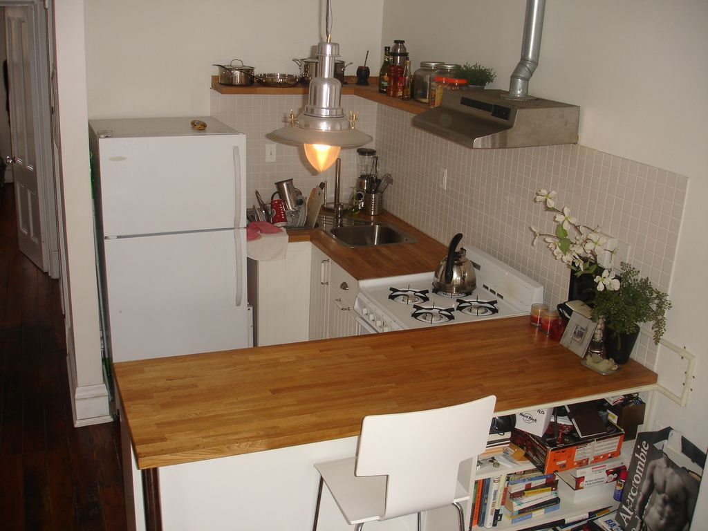 1 bedroom apartment in a bright newly renovated brownstone hosts
