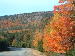 Acadia National Park cottage photo - Fall color on rte. 3 looking toward Seal Harbor - 3 miles away