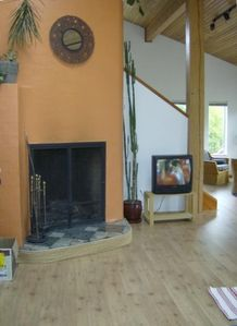 Bamfield Dragonfly Vacation Rentals livingroom fire place
