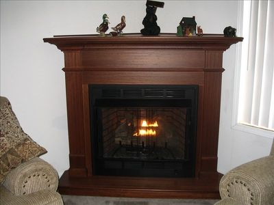 Albrightsville house rental - Gas Fireplace
