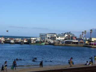 St James house photo - Kalk Bay Harbour