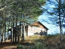 Dugspur Cabin Rental Picture
