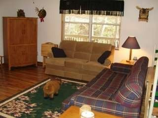Maggie Valley cabin photo - Family room with sofa bed, Dish, WIFI (Wireless Internet), VCR, DVD and movies