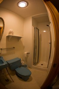 Hall bath with retro fixtures and newer stall shower