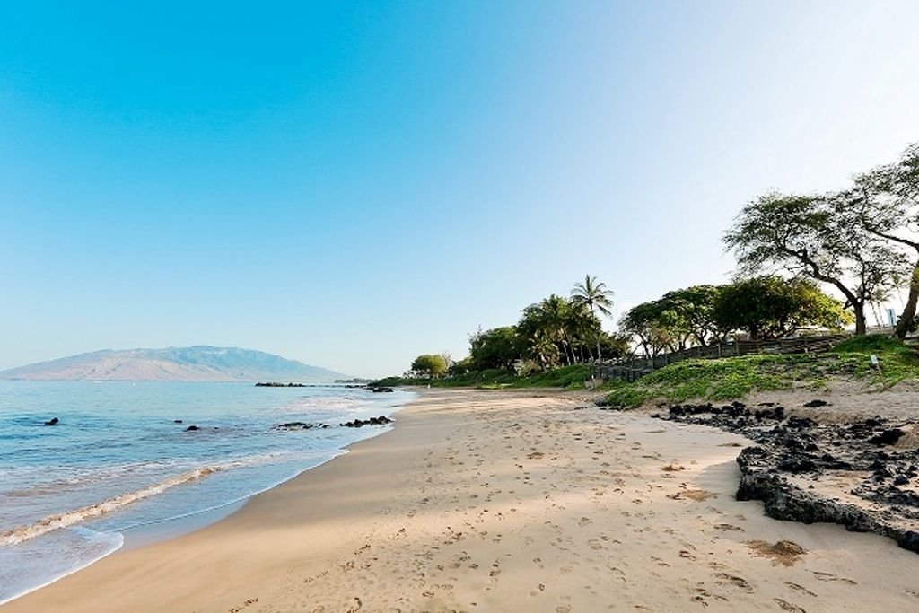 About Maui Vacation Rentals. Maui is a diverse and scenic island with immaculate beaches, upscale resorts, charming small towns and great places to eat and shop. Maui is also home to Haleakala National Park with outstanding hiking and breathtaking views from atop a ten thousand foot volcano.