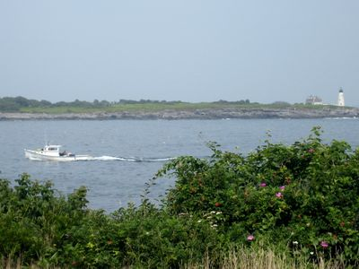 View of Wood Island from the Audubon Sanctuary Nature Trail