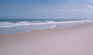 Vero Beach house photo - The beautiful private beach just a few steps from the house