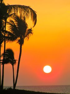 Amazing Maui Sunset taken across the street from Condo at Kamaole Beach II!