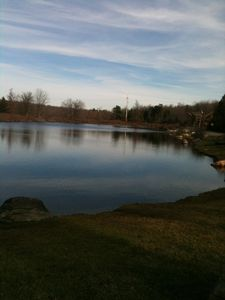 Poconos Pines / Lake Naomi house rental - trout pond across the street