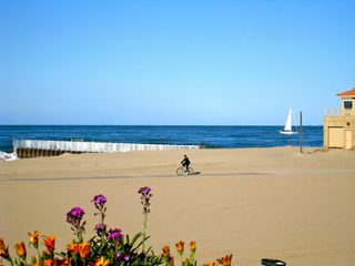 Marina del Rey condo photo - Beautiful quiet beach with easy access to the bike path