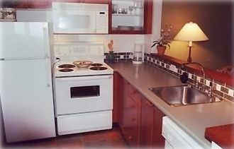 Fully equipped kitchen with refrigerator, stove, microwave and dishwasher