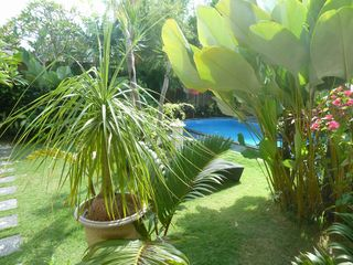 Seminyak villa photo - Tropical