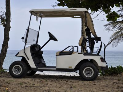 Privately Owned Golf Cart