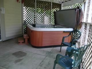 6 person hot tub in private screened in porch