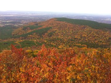Mount Nebo cabin rental - Beautiful view of fall foliage from the back porch of the cabin.