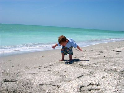 Captiva Island cottage rental - Shelling on beautiful beach outside Beach Cottage