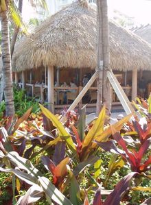 Super grounds,pools , cantina and tiki bar to enhance your enjoyment