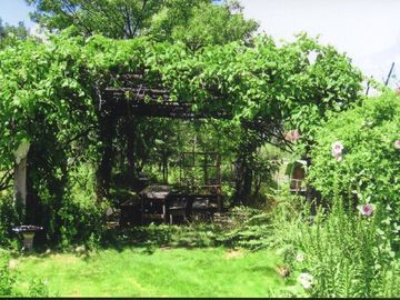 Grape arbor dining area for the outside kitchen