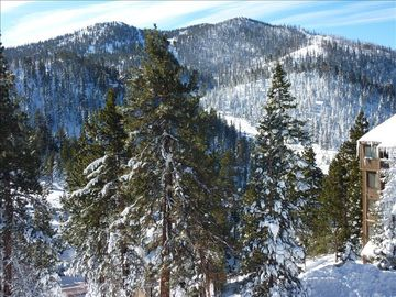 Stateline condo rental - Front balcony views of Heavenly Ski Runs - breathtaking beauty right outside!