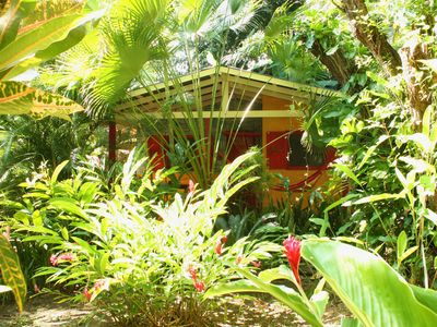 Quiet, peaceful bungalow set in tropical garden-300meters from the beach.