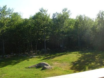 View from the deck in summer
