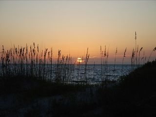 Indian Rocks Beach condo photo - Sunset behind the sea oats. Taken from the balcony