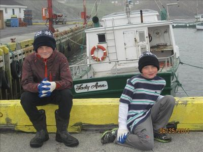 Hanging out at the wharf in Ochre Pit Cove