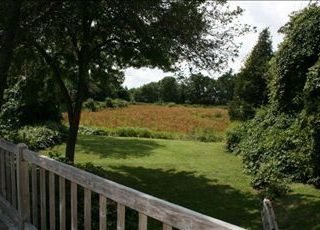 Orleans house photo - View of the Cranberry Bog from the back deck is simply beautiful.