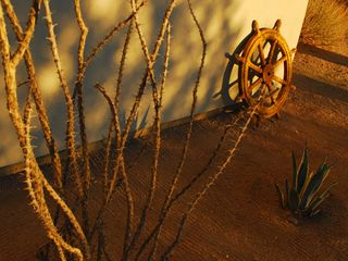 Joshua Tree house photo - Side yard