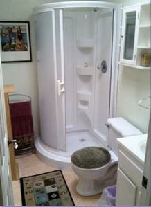 Bathroom w/ new rounded-corner shower & skylight
