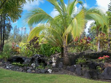 Pahoa house rental - Large fish pond