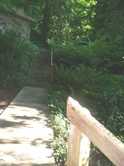 Olympia cabin photo - Walk way and stairs to parking from cabin. 27 steps total
