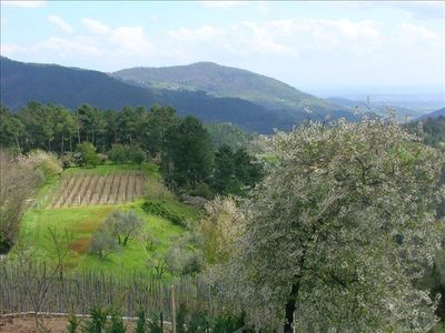 View of surrounding hillsides of terraced vineyards.